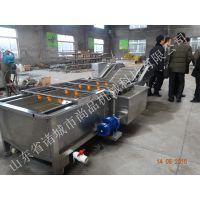 供应厂家直销 山楂清洗-漂烫机 山东专业清洗机械 欢迎洽谈业务
