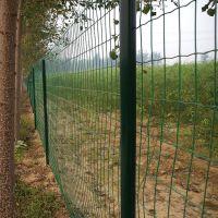 双边护栏网 公园护栏网 浸塑铁丝网 安平现货浸塑护栏网 铁丝网片