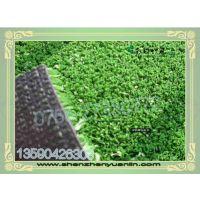 仿真人造草坪假草皮人工幼儿园楼顶阳台绿色装饰地垫塑料绿植物墙