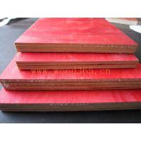 沈阳多层板 沈阳木材批发市场 木模板 钰瑧批发量大优惠 河北廊坊实木板