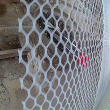 再生料塑料平网 塑料养殖网价格 特种养殖网
