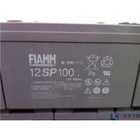 非凡蓄电池12V100AH