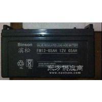 12v100ah滨松蓄电池厂家直销
