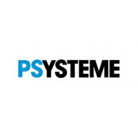 PSYSTEME平直度仪