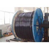 BLV,甘肃丰达电线电缆(优质商家),铝芯BLV