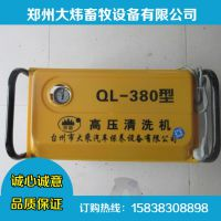 大炜供应批发QL-380高压清洗机、洗车机高压清洗机清洗管喷枪 进水管