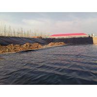 出售养鱼塘养殖塑料布膜防渗漏用防渗布 泥鳅塑料薄膜_莲藕地膜价格