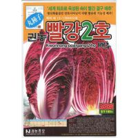紫白菜▁紫白菜种子韩国原包装进口品种