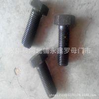 永年厂家现货供应M27X70外六角螺栓 4.8级 8.8级 12.9级