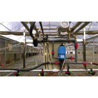 温室大棚遥控自走式美国喷头喷水育苗喷灌机、喷水车、喷灌设备厂家销售