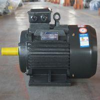 YD多速电机经久耐用|六盘水YD多速电机|金力特(在线咨询)