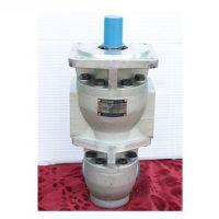 供应泰力CB-F50/10高压双联齿轮泵