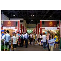 2016上海第九届海外留学展