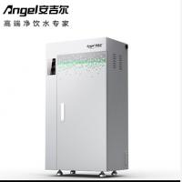 安吉尔商用净水机200G经济型
