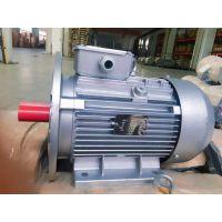 上海德东电动机YS100L-2 3KW B35小功率铝壳电机 厂家直销