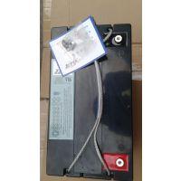 美国海志蓄电池HZS12-24胶体蓄电池
