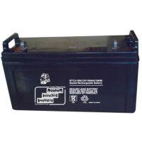 金狮蓄电池12V100AH厂家