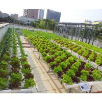 供应供应庭院阳台无土栽培设备技术蔬菜瓜果无土栽培种植水栽培技术