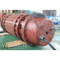 供应大功率高压潜水电机型号齐全_价格***低的高压潜水电机厂家直销