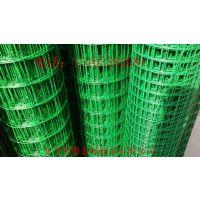 荷兰网|涂塑荷兰网|浸塑荷兰网|涂塑电焊网|冷热镀锌电焊网