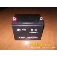 12V33AH蓄电池 风光互补储能电源电瓶 免维护铅酸 UPS备用电池