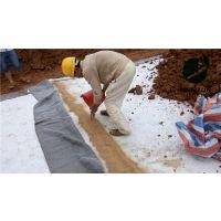 柳州覆膜膨润土防水毯授权生产商