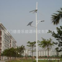 【DPL品牌】 400W 风光互补监控系统