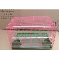 现货供应安徽宿州市宠物笼子鹦鹉笼子八哥笼子价格优惠