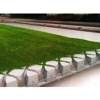 阳光雨高承载生态植草透水地坪——现浇植草透水地坪