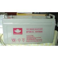 山顿UPS电源专用铅酸蓄电池山顿12V100AH价格