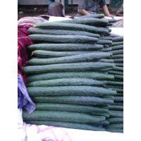 永年黄瓜|河北黄瓜种植基地|黄瓜哪里批发便宜