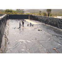 供南阳鱼塘池底防渗膜/污水池复合土工膜施工