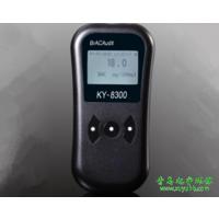 带打印功能 呼气式酒精检测仪 花豹3号KY-8300酒精测试仪