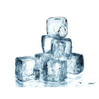供应连锁奶茶店制冰机 日产250公斤的大型制冰机生产厂家