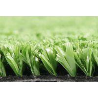 泰山足球场地用人造草坪