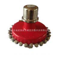 厂家直销 无励磁分接开关 WSP III 250/10-5*5