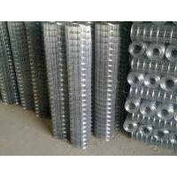 【犇阳】大孔改拔电焊网生产厂家 改拔电焊网