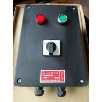 带灯按钮开关盒FZC-S-A1D1K1G三防操作柱
