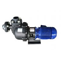羊城牌自吸泵 50052H 大头泵 氟塑料耐酸碱泵 羊城泵业 广州水泵厂 东莞水泵厂