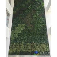 绿化植物墙、生态墙、植物景观墙