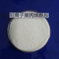 长沙地区聚丙烯酰胺的需求量小的原因和当前阴离子聚丙烯酰胺的报价多少钱一吨纯品ajj生产