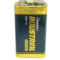 PairDeer/双鹿9V碱性电池