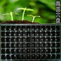 72穴PVC吸塑园林育苗穴盘 蔬菜瓜果多肉育苗园艺花盆穴盘加工定制