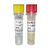 供应北京DyLight 549标记山羊抗人IgG二抗厂商