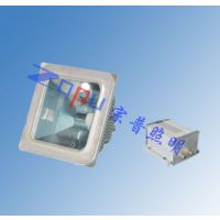 NFC9100-J70/NFC9101-J70低顶灯