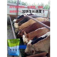 牛羊宝-肉牛育肥期间发生拉稀的原因及解决方法