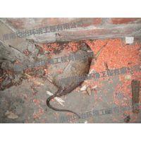 全国灭鼠灭四害技术培训中心0554-3620036