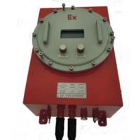 GXH-1050D 防爆气体分析仪