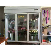 佛山冷柜 雅绅宝 鲜花展示柜冰柜 进口玫瑰花保鲜冰箱 展示花卉冷藏