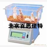 百思佳特xt22880称量实验大小鼠专用电子秤